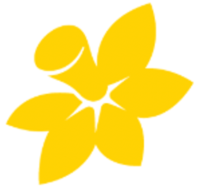 About Daffodil Day